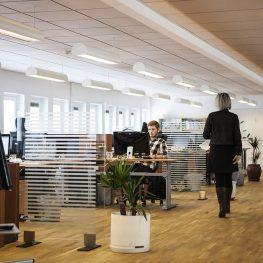 Empresa e iniciativa emprendedora - Telecobosco